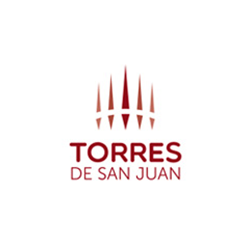 Torres de San Juan logo